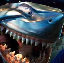 Bruce has his own interactive play area at The Seas with Nemo and Friends.
