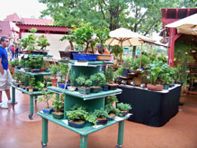 Outdoor Flower and Garden stand located on the World Showcase walkway