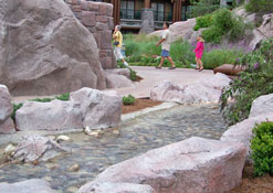 Creek that leads into the pool at the Wilderness Lodge