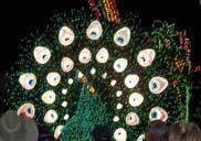 The Spectromagic Parade at the Magic Kingdom