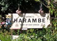 The village of Harame in Africa ar Disney's Animal Kingdom