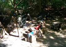Kilimanjaro Safari Attraction At Disney's Animal Kingdom