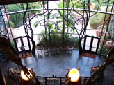 View of Animals from Lobby