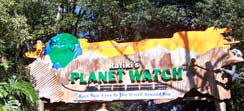 Rafiki's Planet watch at disney's Animal Kingdom