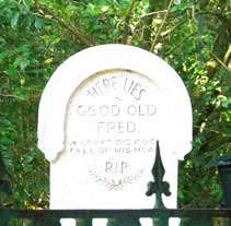 Grave yard outside Haunted Mansion